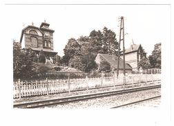 Montigny-le-Tilleul / Landelies - Photo Originale Cliché Pour CP Rue Albert Ier, Villa Bois Joli, Château Delbruyère - Montigny-le-Tilleul