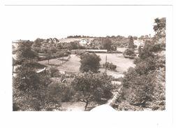 Montigny-le-Tilleul / Landelies - Photo Originale Cliché Pour CP - Vue De Village - Montigny-le-Tilleul