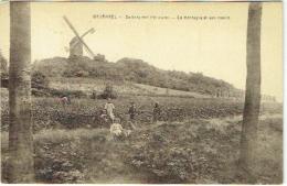 Wesemaal/Wesemael. De Berg Met Molen. Montagne Et Moulin. - Rotselaar