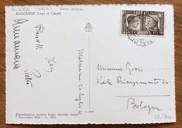 FRATELLANZA D'ARMI  10c. Su CARTOLINA DA MALCENISE A BOLOGNA IN DATA 20/7/41 - 1900-44 Vittorio Emanuele III