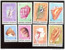 MALDIVES ; MINT N.H. STAMPS ; SCOTT # 533-40 ; IGPC 1975 ( SEA SHELLS ; COWRIES - Malediven (1965-...)