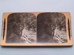 SHADOW GORGE, Watkins Glen, N Y ( 376 ) Stereo Photo IMPERIAL SERIES ( Voir Photo ) ! - Photos Stéréoscopiques