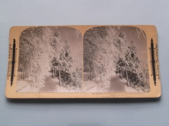 The Path On GOAT Island By The Canadian Rapids, Winter, Niagara ( 355 ) Stereo Photo IMPERIAL SERIES ( Voir Photo ) ! - Photos Stéréoscopiques