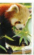 Ménagerie Du Zoo Du Jardin Des Plantes - Musée National D'Histoire Naturelle (Paris - France) - Tickets - Vouchers