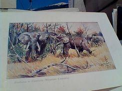 ELEFANTE ELEPHANT ILLUSTRATA  By ETHIOPIAN AIRLINES MENU ON BOARD  N1970 GH17142 - Elefanti