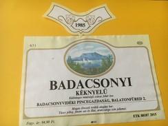 5382 - Badacsonyi Kéknyelu 1985 Hongrie Voiliers Sur Le Lac - Etiquettes