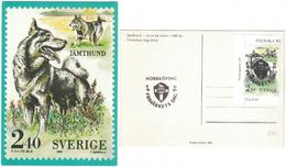 Sweden - Svenska Hundar F#1586 NORRKÖPING 8/10 1989 On PT-card - Sweden