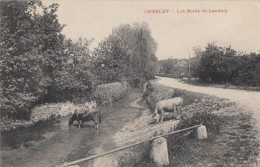 CPA - Chesley - Les Bords Du Landion - Francia