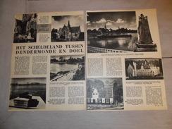 """Origineel Knipsel ( 40 ) Uit Tijdschrift  """" Het Volk """" 3 Blz. : Scheldeland  Dendermonde Temse Hamme Mariekerke Bornem - Vecchi Documenti"""