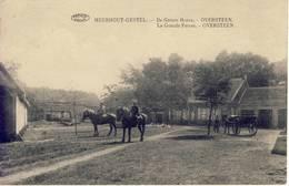 Meerhout-Gestel Meerhout De Groote Hoeve Oversteen 1923 - Meerhout