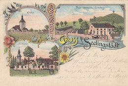 Gruss Aus Seelingstädt - Litho - 1911         (A-54-110821) - Other