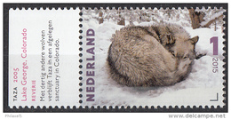 Nederland - Charlotte Dumas - Taza, 2005 - Wolf - MNH - NVPH 3333 - Wild