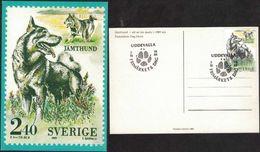 Sweden - Svenska Hundar F#1586 UDDEVALLA 7/10 1989 FD On PT-card - FDC
