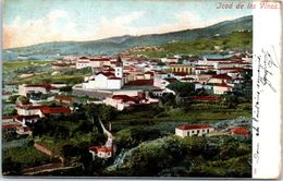 ESPAGNE -- Icod De Las VINOS - Espagne