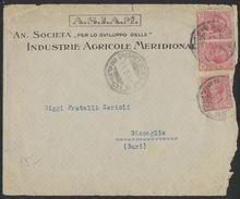 "TY88  Ponticelli (NA) 1919 Busta ""An. Società Industrie Agricole Meridionale"" Per Bisceglie 3x10c Leoni - Storia Postale"