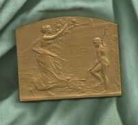 FECAMP - Cinquantenaire De La Bénédictine - 1913 - Bronze - Graveur Ch. Pillet - - Professionali / Di Società