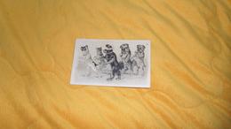 CARTE POSTALE GAUFFREE ANCIENNE CIRCULEE DE 1907. / SCENE CHIENS JOUANT A COLAMAYAR / CACHETS + TIMBRE - Chiens