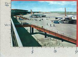 CARTOLINA VG ITALIA - ROMA FIUMICINO - Aeroporto Intercontinentale Leonardo Da Vinci - 10 X 15 - ANN. 1968 - Transports