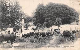 Villiers Aux Corneilles        51      Le Château. Vaches Hollandaises Au Pâturage   (Un Peu Défraichie Voir Scan) - Frankrijk