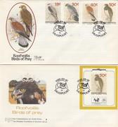 GOOD BOPHUTHATSWANA Two FDC 1989 - Birds - Bophuthatswana