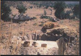 °°° 9163 - CAMEROUN - TOKOMBERE - AIRE DE VANNAGE ET SARE' °°° - Camerun