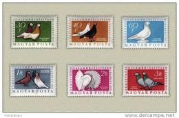 Hungary 1957. Animals / Birds / Pigeons Complete Set MNH (**) Michel: 1505-1510 / 3.40 EUR - Oiseaux