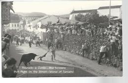 50926 ) Postcard Azores Island Of Terceira Real Photo  Bull Fight On The Street - Açores