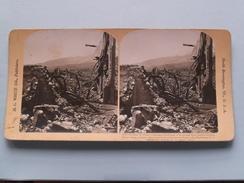 Stapeless Ruins Of CAMINADE Warehouse MARTINIQUE W.I. (8213 - 13) Stereo Photo H C White ( Voir Photo Pour Detail ) ! - Photos Stéréoscopiques
