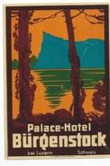 SUISSE - BURGENSTOCK  - Luggage Label étiquette - PALACE HOTEL  - (75X110 Mm) - Etiquettes D'hotels
