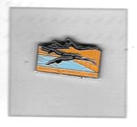 Pin's  Sport  NATATION, AUXERRE  AQUATIC  CLUB  à  AUXERRE  ( 89 ) - Swimming