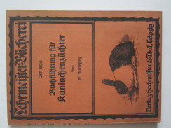 Livre Lehrmeifter Bucherei Buchfuhrung Fur Kaninchenzuchter Maehnes Lapin Agriculture élevage Leipzig 1921 - Autres