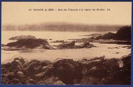 29 CLEDEN-CAP-SIZUN Baie Des Trépassés à La Région Des Grottes - Cléden-Cap-Sizun