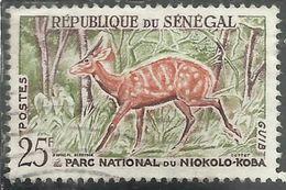SENEGAL 1960 FAUNA Bushbuck 25f USATO USED OBLITERE' - Senegal (1960-...)