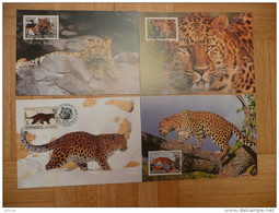 WWF North Nord Korea - Amur Leopard 1998 4 CM MC MK  Maxi Maximum Card Carte MAxicards Maximumkarte - Maximum Cards