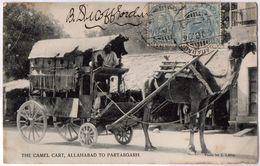 THE CAMEL CART, ALLAHABAD TO PARABGARH.  (Verso Taché) - India