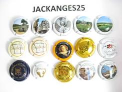 UN LOT N° 13  DE 15 CAPSULES DE CHAMPAGNE  ET AUTRES TOUTES DIFFERENTES - Other
