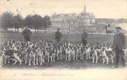 CHASSE A COURRE ** Lot De 4 Cartes **60 - CHANTILLY : La Meute ... CPA Différentes - Hunting With Hounds Fox-Jagd Fox - Chasse