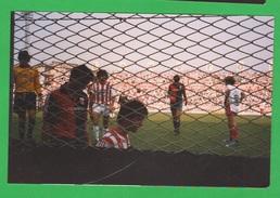 Sport Calcio Vicenza  Stadio Romeo  Menti Giocatori Bertozzi E Nicolini 1985 - Sport