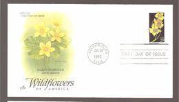 WILDFLOWERS  OF  AMERICA - 1991-2000