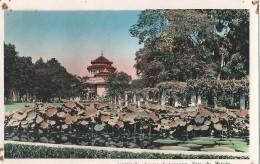 Vietnam Saigon Jardin Botanique Vue Du Musée - Vietnam