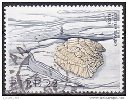 Ireland (1982):- Flora & Fauna 5th Series/Fish/Oyster (22 P):- USED - Used Stamps