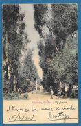 ALAMEDA LA PAZ BOLIVIA 1903 - Bolivia