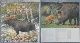 Calendar: Nordic Wildlife 2000 - Calendarios