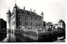 49 - JOUE ETIAU - Château De La Frappinière Façade Nord ( Propriété Des Ets Morellet Guérineau à CHOLET) - France