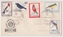 URUGUAY Airmail BIRDS EARLY FDC 1962 - Songbirds & Tree Dwellers