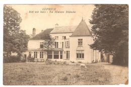 Loppem / Lophem - Het Wit Huis / La Maison Blanche - Uitg. Osselaere - Lippens - Zedelgem