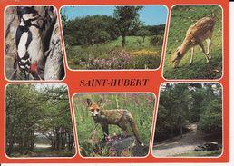 DIEREN  UIT  SAINT HUBERT - Animaux & Faune