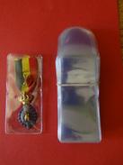 Paquet De 11 Pochettes Individuelle Pour Décoration - Matériel