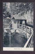 CPA ANGLETERRE - ISLE OF WIGHT - SCHANKLIN CHINE - TB PLAN Maison En Bois - Angleterre