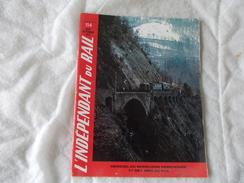 IDR L'indépendant Du Rail N° 114 Aout Septembre 1973 Revue De Chemin De Fer Train - Chemin De Fer & Tramway